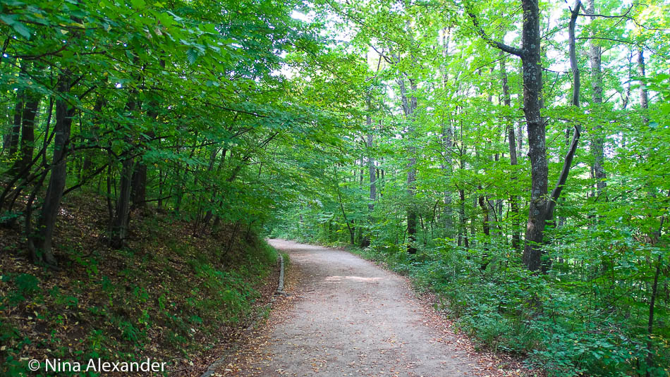 Vitosha walking path 2