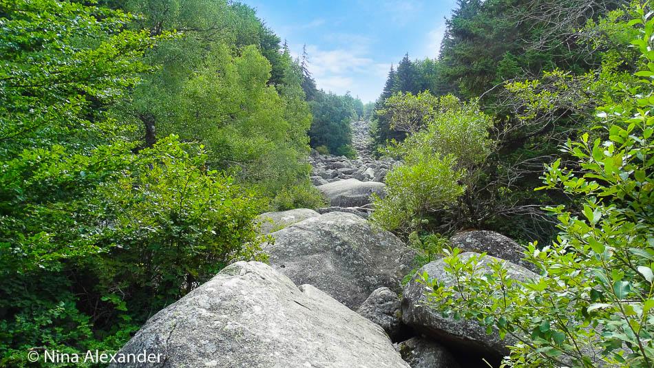 Hiking to Golden bridges, Vitosha 10