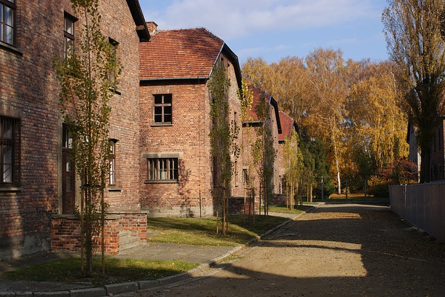 Auschwitz houses