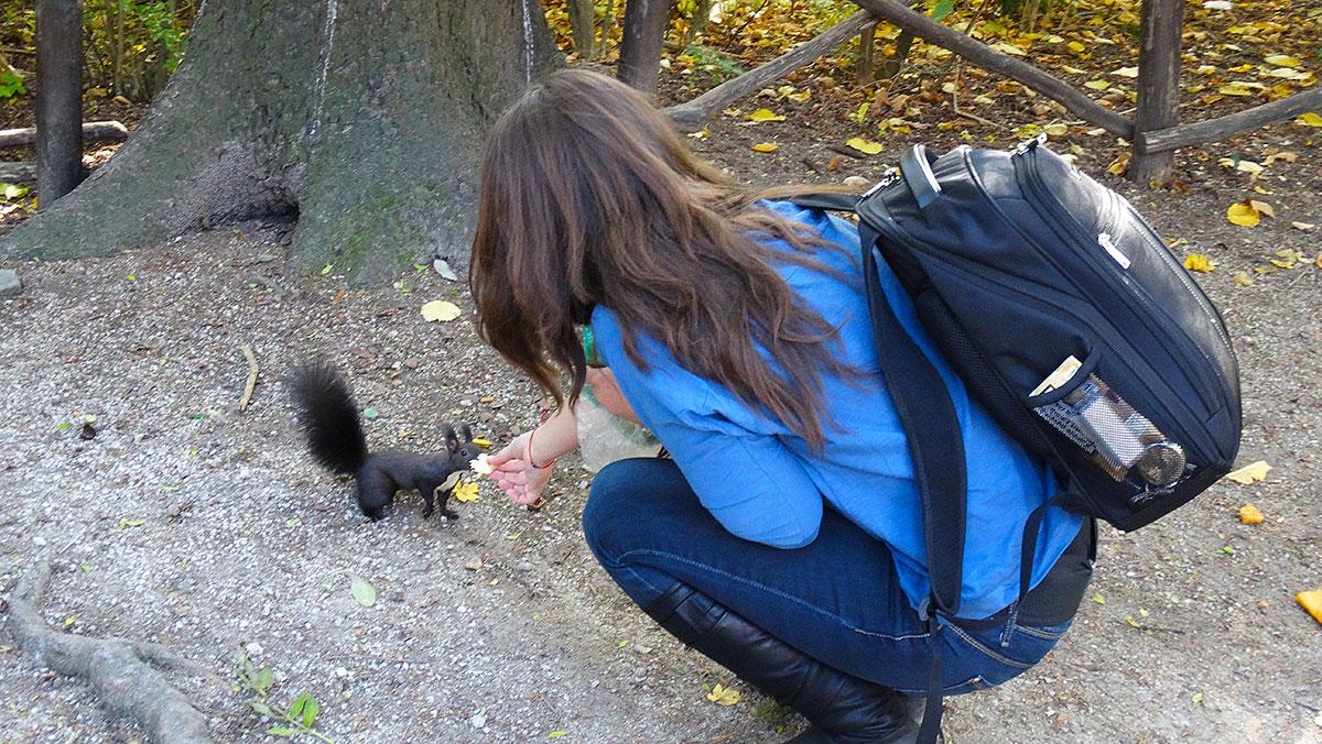 Feeding a squirrel in Tivoli park, Ljubljana