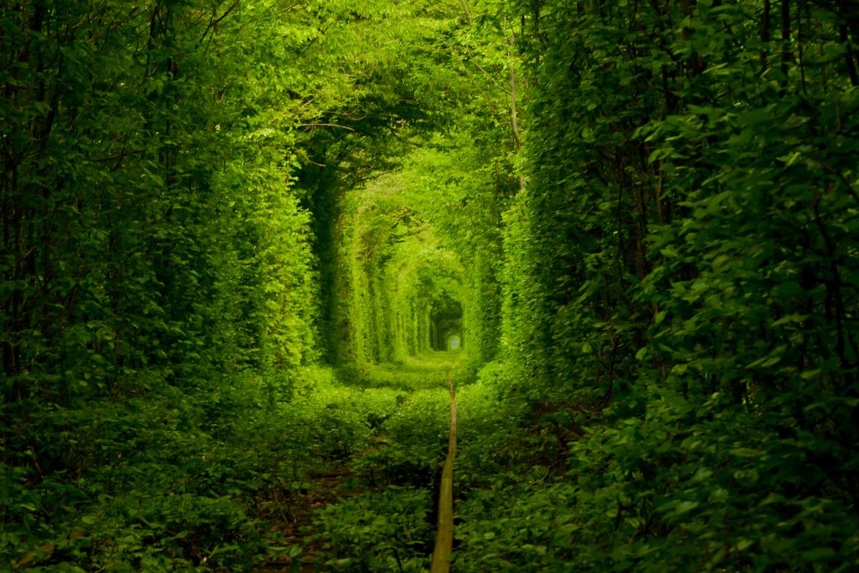 Tunnel-OfLove-ukraine