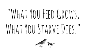 What you feed grows what you starve dies