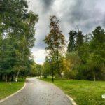 alley in park Rila, Dupnitsa