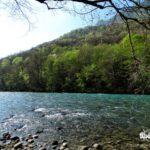 The blue hue of Tara River