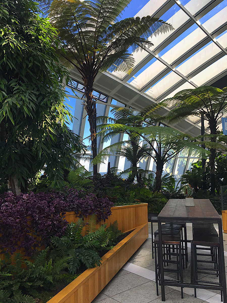 The prettiest area of London Sky Garden
